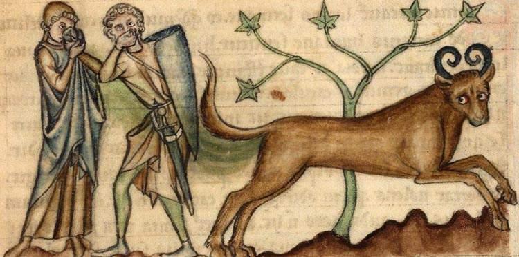 Istine i zablude o astrologiji i astrolozima