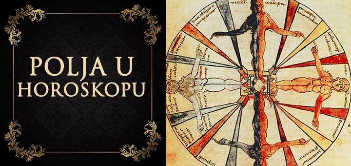 polja u horoskopu