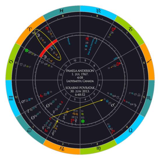 pamela anderson solar 2013